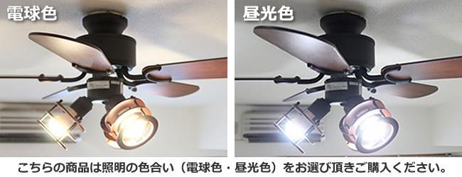 YCF-358BK + LD2601 / DD2601 YOUWA(ユーワ)製シーリングファンライト【生産終了品】