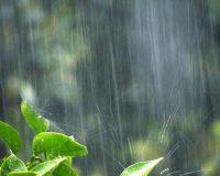 おしゃれなシーリングファンで新型コロナウィルスが苦手な高温多湿を乗り切る活用法